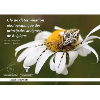 Clé de détermination photographique des principales araignées de Belgique