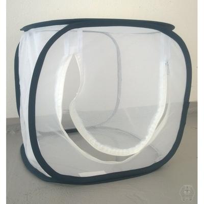 Cage d'élevage d'insectes 30x30x30 cm