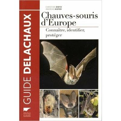 Chauves-souris d'Europe