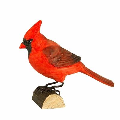 Américain Cardinal rouge