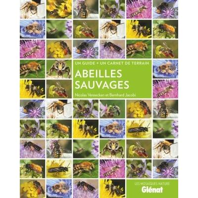 Abeilles sauvages (guide + carnet de terrain)