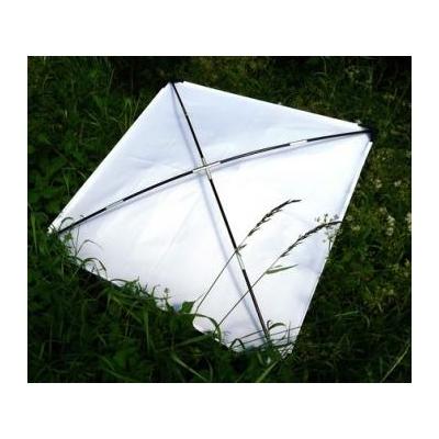 Toile de remplacement - parapluie japonais