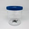 Mega-boite-loupe-insecte-Navir-bleue-(1)