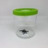 Mega-boite-loupe-insecte-Navir-verte-(2)