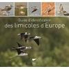 guide-identification-limicoles-z
