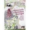 decouverteorchidees-z