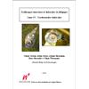 mollusques-terrestres04-z