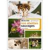 decouvrir-proteger-nos-abeilles-sauvages-cover