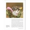 decouvrir-proteger-nos-abeilles-sauvages-page07