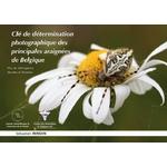 cle-determination-photographique-principales-araignees-Belgique-cover