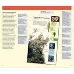 350-arbres-et-arbustes-page01