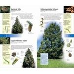 350-arbres-et-arbustes-page02