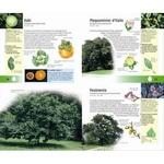 350-arbres-et-arbustes-page03