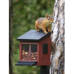 WG313_Squirrel_feeder_red_high_res