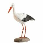 cigogne-blanche-WG469-wildlife-garden-(7)