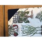 Maunakea-herbier-fermeture-elastique-(1)