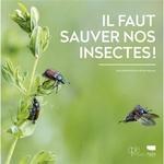 Il-faut-sauver-nos-insectes