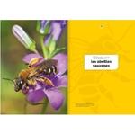 decouvrir-proteger-nos-abeilles-sauvages-page05-6