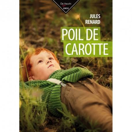 romans-poil-de-carotte-9782732899015
