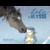 Capture d'écran 2019-01-11 à 15.12.33