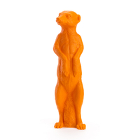 The Suricate ORANGE