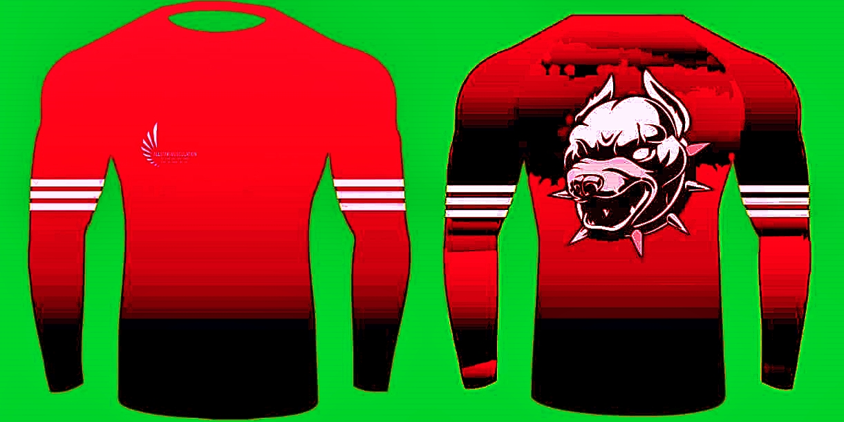 Sweat-shirt ALLSTAR PIT-BULL