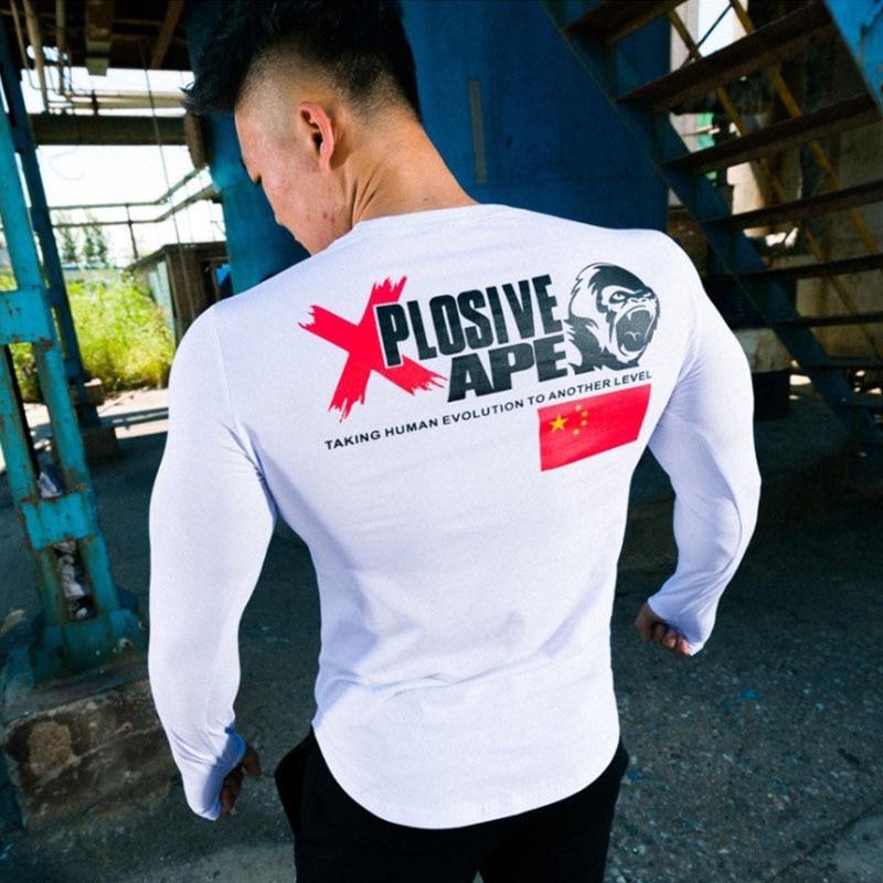 Tee-shirt manches longues Explosive APE