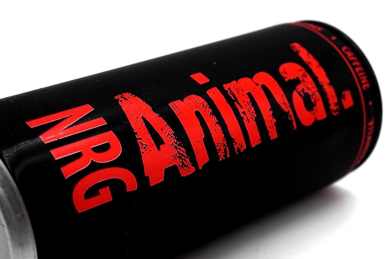 Boisson NRG Animal