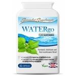 WATERgo-pot-500x500