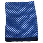 foulard bleu homme en soie louis