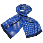 foulard soie homme bleu louis