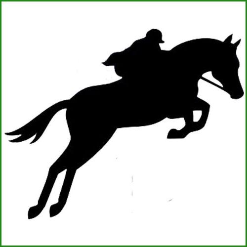 sticker saut de cheval avec cavalier animaux chevaux destock stickers. Black Bedroom Furniture Sets. Home Design Ideas
