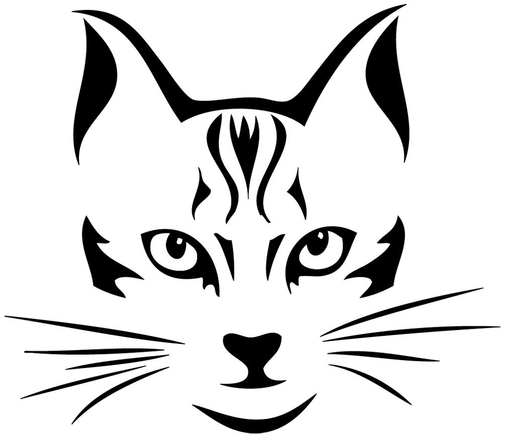 stickers t te de chat animaux chats destock stickers. Black Bedroom Furniture Sets. Home Design Ideas