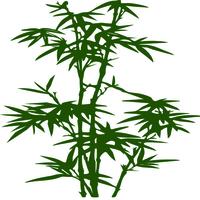Sticker bambou réf 204