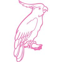 Stickers oiseaux Cacatoès réf 01