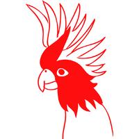 Sticker oiseaux Cacatoes réf 02
