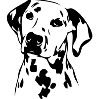 Stickers autocollant chien dalmatien