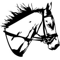 Sticker Tête de cheval pur sang réf02