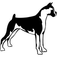 Stickers autocollant chien Boxer 04