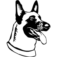 Stickers autocollant chien Malinois 03