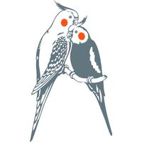 Stickers oiseaux couple de calopsittes