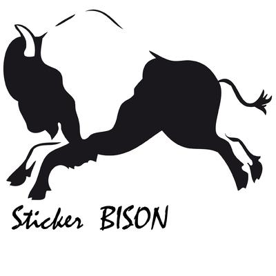 MS bison