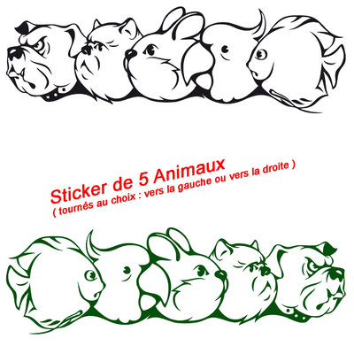 stickers 5 animaux chien chat lapin perroquet poisson