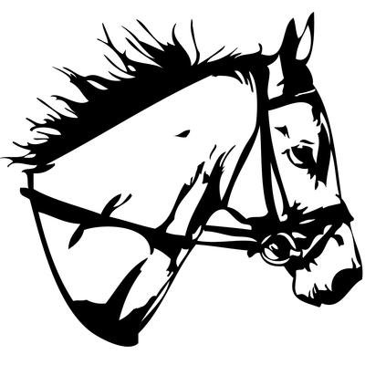 Stickers tete de cheval 02