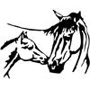 stickers cheval et son poulain