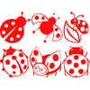 Stickers 6 coccinelles