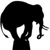 Stickers éléphant au cirque