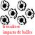 stickers impacts de balles