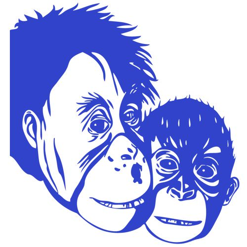 stickers les 2 singes chimpanz animaux sauvage destock stickers. Black Bedroom Furniture Sets. Home Design Ideas