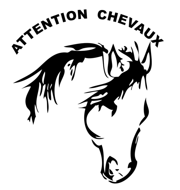stickers attention chevaux 01 sport quitation destock stickers. Black Bedroom Furniture Sets. Home Design Ideas